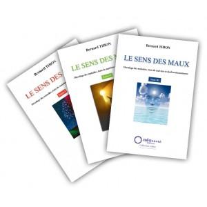 PDF Le sens des maux les 3 tomes